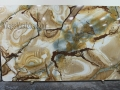 Palomino Exotic Quartzite Slab